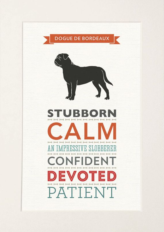 Dogue de Bordeaux Dog Breed Traits Print by WellBredDesign on Etsy