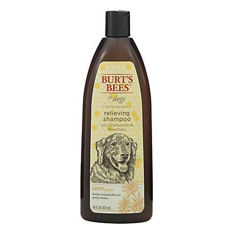 Burt's Bees Care Plus+ Relieving Chamomile & Rosemary Dog Shampoo | Petco