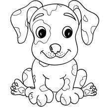 Pet Collages Coloring Pages