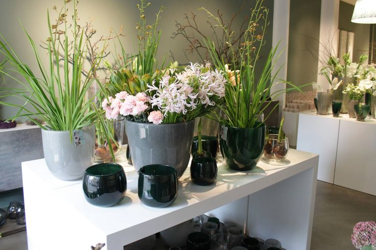 Více než 25 nejlepších nápadů na Pinterestu na téma Blumen - lampe für küche