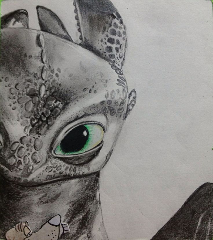 Amazing drawing of toothless drawings sketches art for Cool detailed drawings