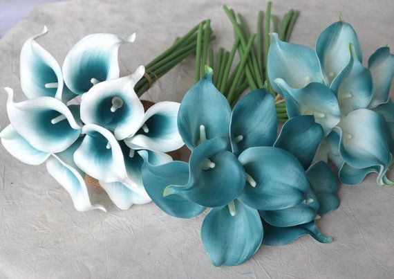 10 Picasso Teal Blue Teal Edge Calla Lilies Real Touch Flowers