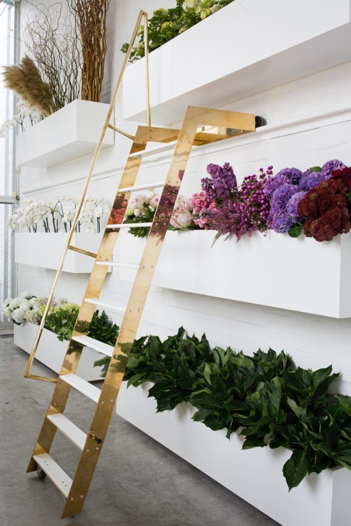 Best 25 Flower Shop Design Ideas On Pinterest Floral Shops Near Me Flower Shop Names And Diy