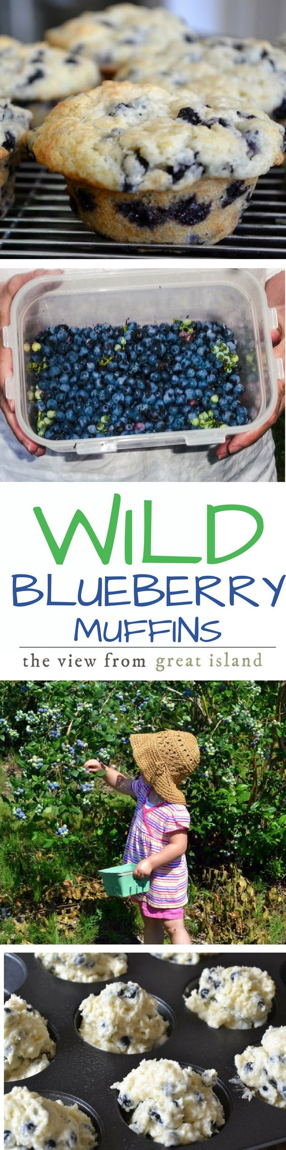 Wild Blueberry Muffins with Key Lime Butter ~ wild blueberries are tastier and healthier than their grocery store cousins ~ and these muffins are the ultimate morning treat!   breakfast  