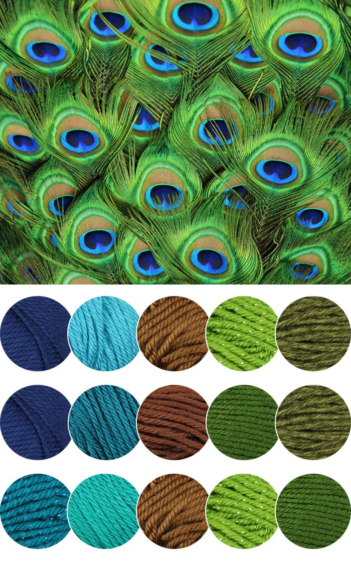 Peacock Color Inspiration | Gleeful Things