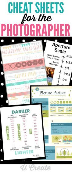 Cheat Sheets for the Photographer - learn aperture, shutter speed settings and so much more!