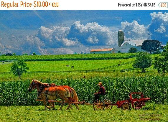 Il sagit dune photographie dun jeune fermier Amish et la campagne de néerlandais de Pennsylvanie.  TAILLES : Cette photographie est disponible dans les tailles suivantes (les prix sont en dollars US) : 4 « X 6 » 10 $ 6 « X 9 » $25 8  X 12 35 $ 16 « X 24 » 90 $ 20 « X 30 » 130 $ 24 « X 36 » $160  PASSER une commande : Pour commander une copie dans un format particulier, vous pouvez effectuer les actions suivantes : (a) « message » moi (b) cliquez sur request custom item » dans la section «…