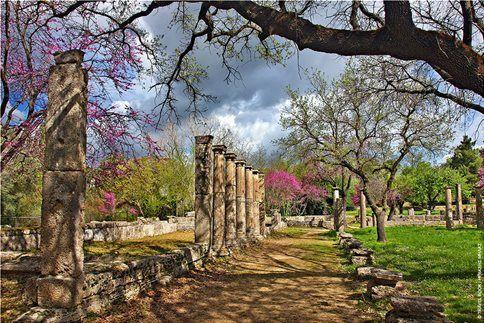 Διεθνές συμπόσιο στην Αρχαία Ολυμπία (1-6/9/2015)