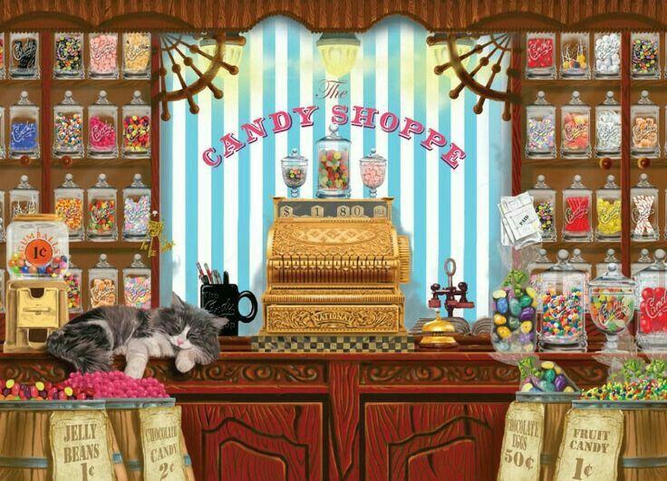 gatto sul bancone del negozio di caramelle