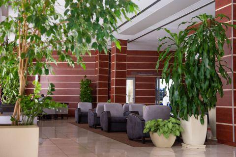 Hotel | Hotel Lycium