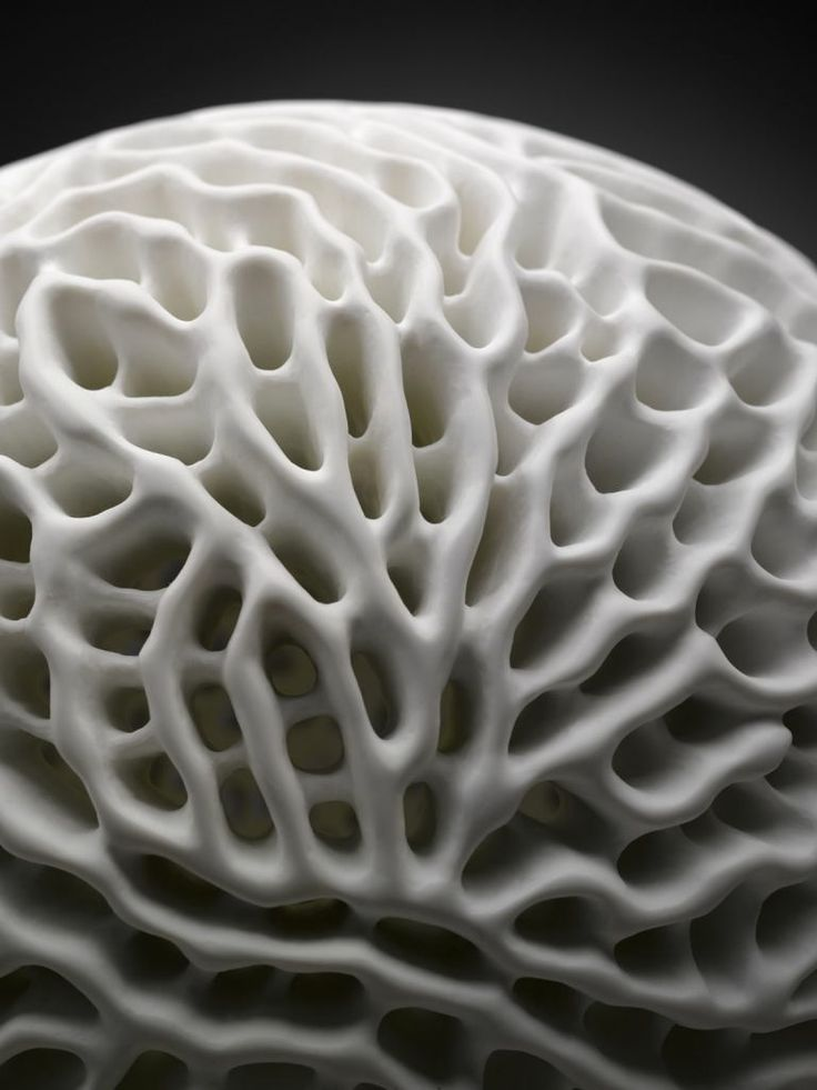 52 best images about natural forms ceramic inspiration on pinterest
