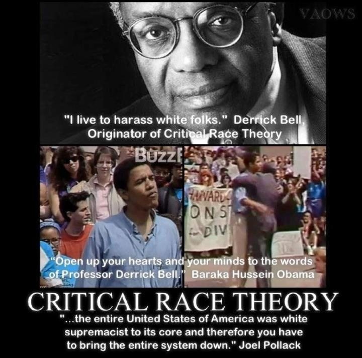 Critical Race Theory | Woman, Wife, Mother, Friend ...
