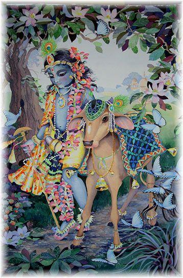 Krishna Herding