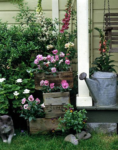 You can have an instant garden wherever you can place a pot or hang a basket -- on a deck, a patio, a balcony, or an outdoor staircase./