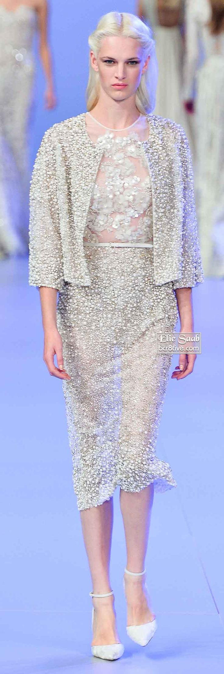 Elie Saab Spring 2014 Couture Collection