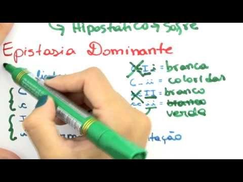 Me Salva! GEN25 - Epistasia dominante e epistasia recessiva - YouTube