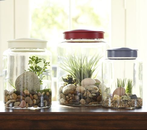 Perfect for displaying rock and fossil collections