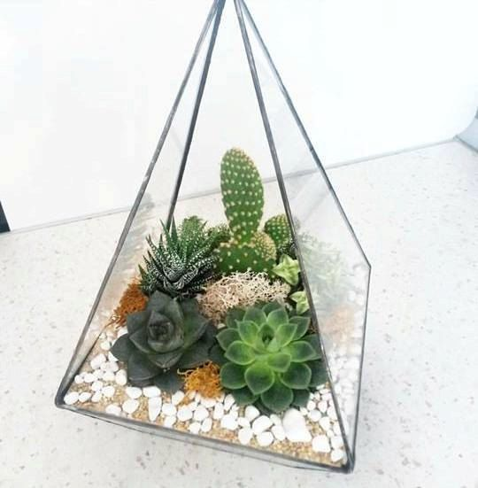 Geometric Terrarium / Pyramid Stained Glass / by TerrariumDesignn