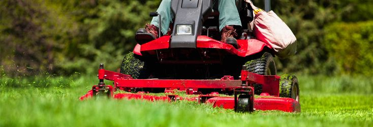 Before you buy a new mower, check out out best and worst walk-behind mowers from our tests | Mower Reviews - Consumer Reports