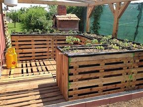 If you want to organize your home grown vegetable section in the garden, then must have this pallet wood gardening panel . This garden bed panel can be affordably created from the pallet woods and will look tremendously unique and pretty. You can also use it as a flower planter or growing herbs or vegetables.