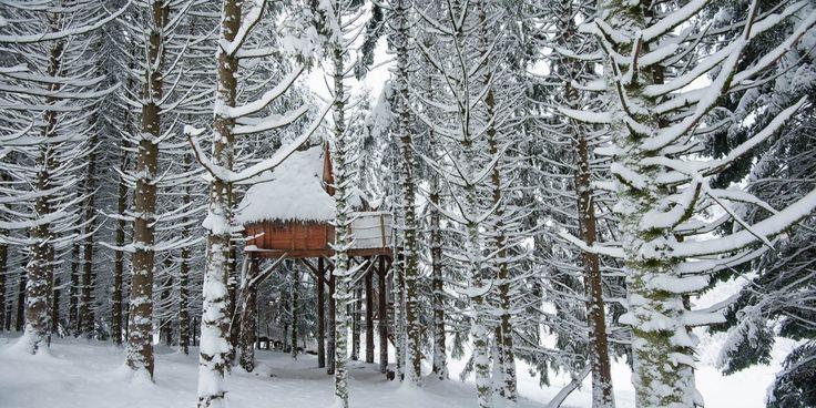 Location de chalets et gîtes dans les Vosges, parapente Vosges, parc d'aventure - Bol d'Air