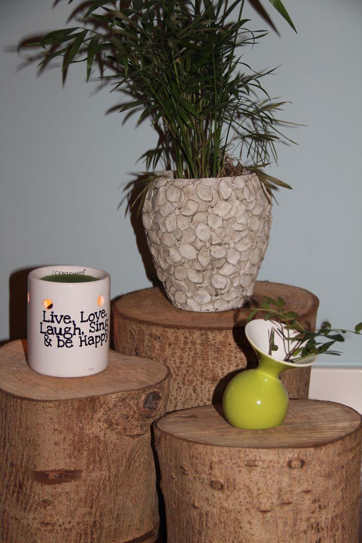 WOOD boomstammetjes,  100%natuurlijk & altijd leuk! www.wooddesign.jouwweb.nl