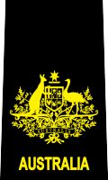 Warrant Officer rank insignia (Mounting loop), contemporary Royal Australian Navy. The symbol is a one/two-colored version of the Australian coat of arms.