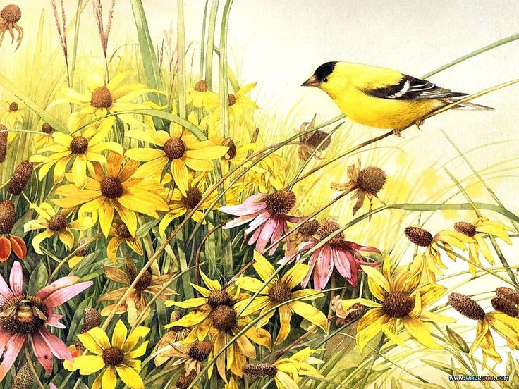 Artists Who Paint Birds | ... Wallpapers | Art Painting >> Index >>Bird Art Painting wallpapers10