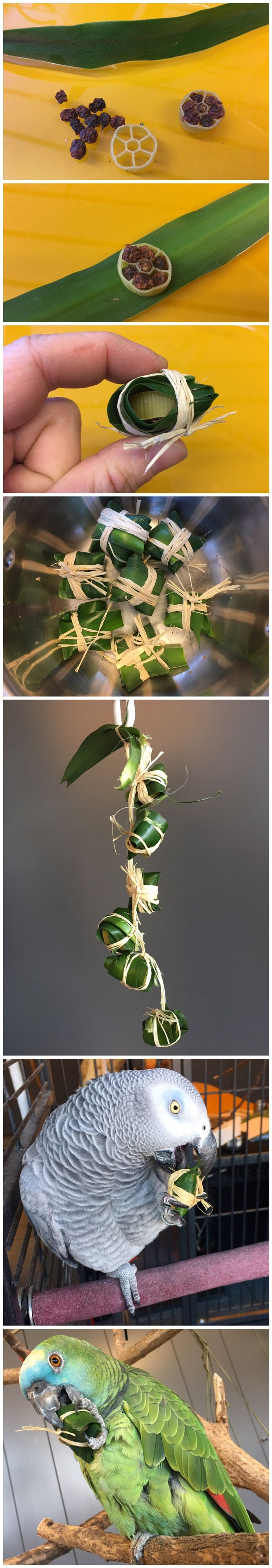 Parrot foraging foot toy: pasta filled with dried berries and wrapped up in yucca leaves
