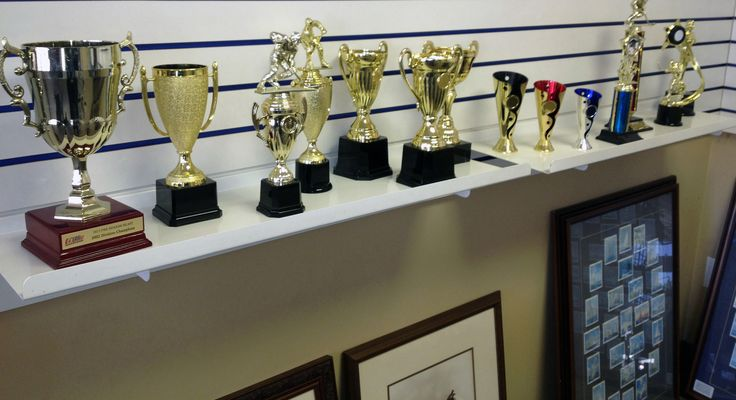 Trophy shop offer wide varieties of Medals, crystal Awards and Acrylic Trophies for  sports teams, family reunion, special party or event, office gathering or other special occasion.Trophy shop provides huge collection of awards  Trophies GTA in all the ideal sizes  affordable prices #TrophiesGTA