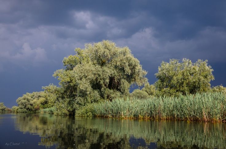 Danube Delta, Backwater Sontea. Delta Dunării, Gârla Șontea, România, Europe  #Danube #Delta #Romania #Chilia #Mila23 #Sulina #Sfântul #Gheorghe #Tulcea The Danube Delta is perhaps the least inhabited region of temperate Europe. In the Romanian side live about 20,000 people, of which 4,600 in the port of Sulina, which gives an average density of approx. 2 inhabitants per km².