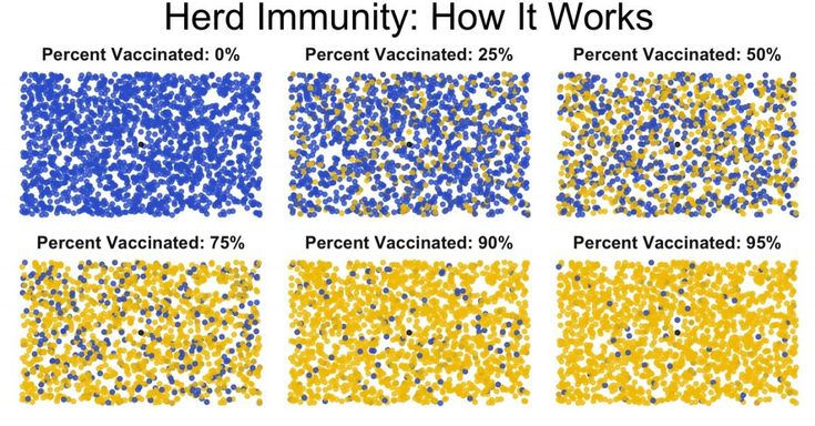 It's sometimes hard to visualize what this 'herd immunity' might look like, but a clever visualization has recently been making the rounds that does a great job.