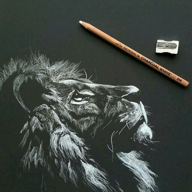 Negative space. On dark paper this  person drew the highlights of the lion
