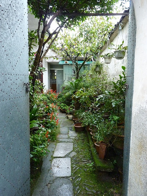 53 best images about Side yard gardening on Pinterest ... on Narrow Side Yard Landscaping id=21264