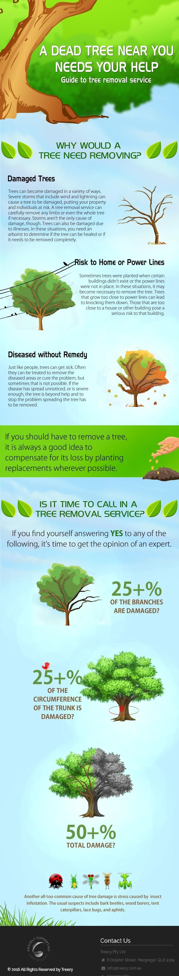 A dead Tree Near You Need Your Help. Guide of Tree Removal Treezy Pty Ltd. Treezy Tree Removal Brisbane Southside expert in Tree Removal , Stump Grinding, Tree lopping, Mulching & Tree Wood chipping and Tree Cutting Services. Call now 07 3999 9851  http://www.treezy.com.au/   #treezy #treeremoval #Treelopping #Trees #Gardening #treecare #Brisbane