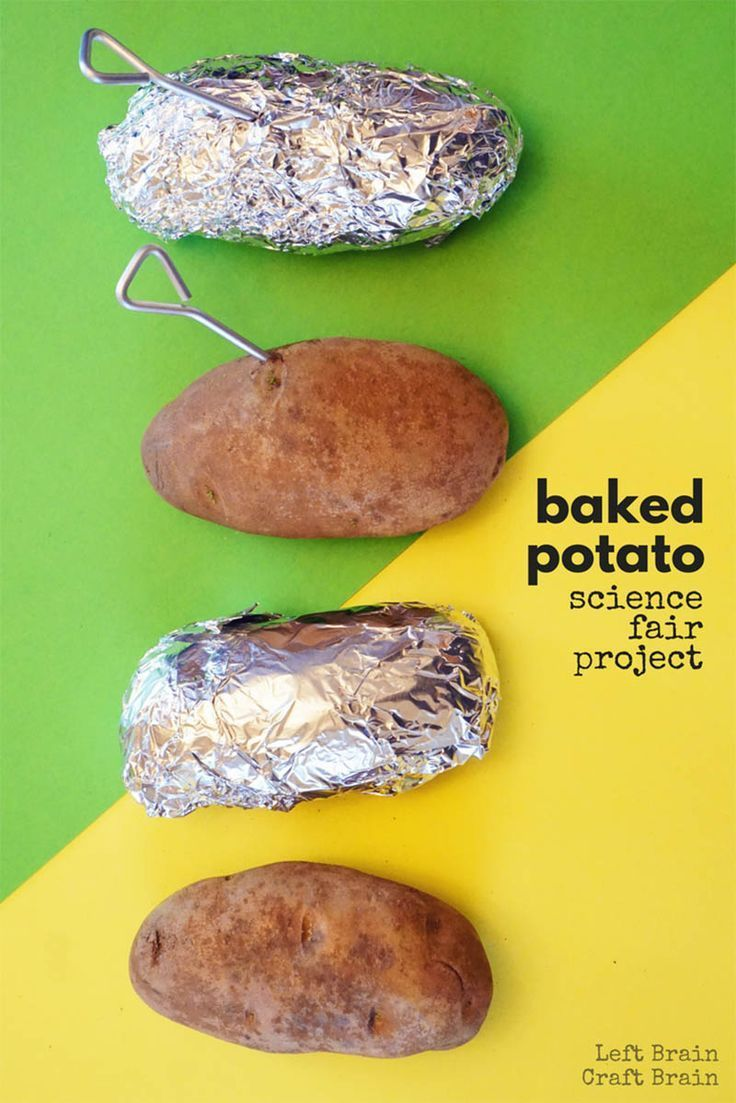 baking potato lab ia The best apples for baking ingredient intelligence  the mashed potato recipe that delivers perfection every time food the best freezer dinners for hectic weeknights.