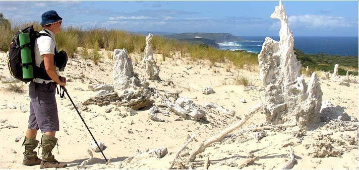 Petrified Forest, William Bay National Park, Denmark, Western Australia