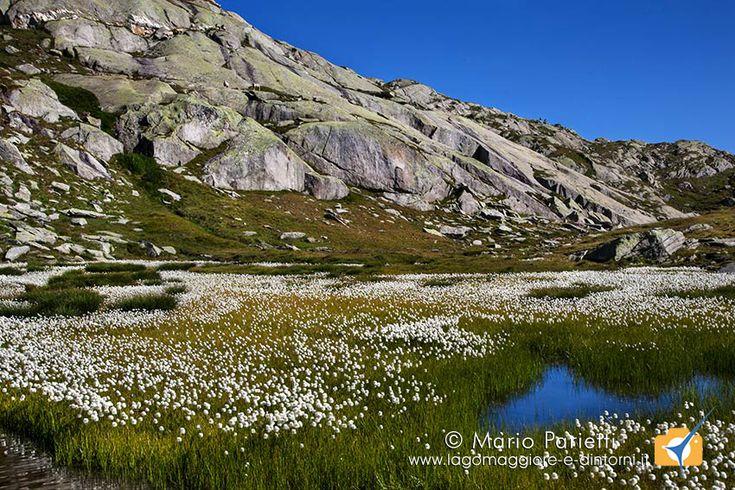 Giro dei 5 laghi del Gottardo, splendida apsseggiata ad anello adatta a tutti