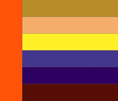 сочетание оранжевого цвета фото