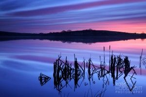 Ross Hoddinott, british photograph, cornwall Tamar Lake