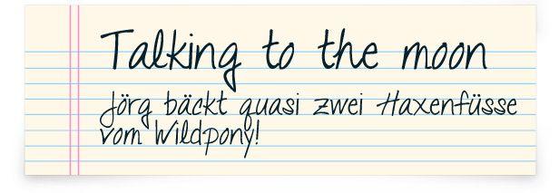 Word Handschrift