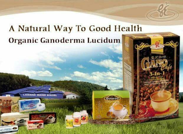 290 best gano excel info images on pinterest coffee health drink jamesthehealthycoffeeguy id 8084130 here to help 480 277 0084 http reheart Gallery