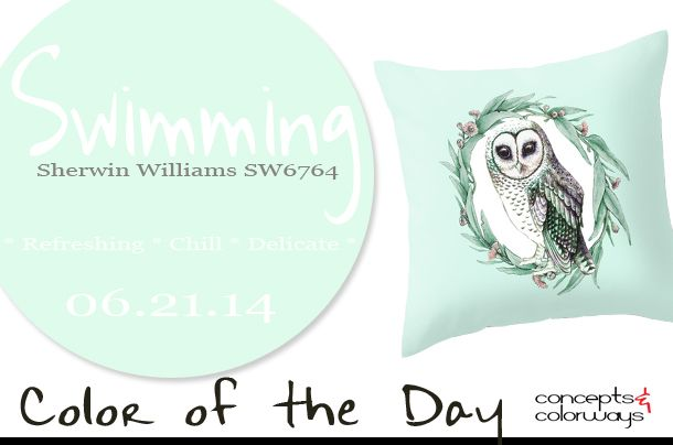 Kinder Garden: 06.21.14 Color Of The Day, Swimming, Sherwin Williams