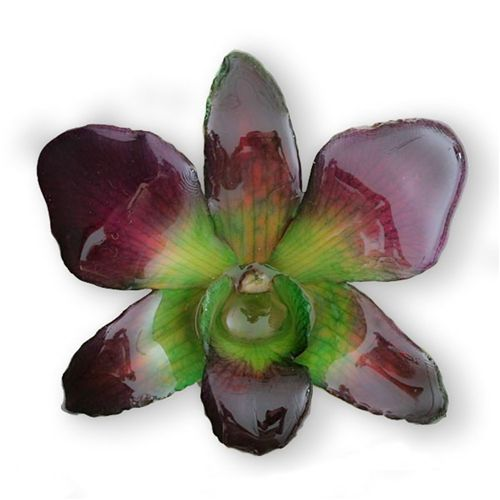 Flower Hair Clips, Butterfly hair clips, Hawaiian Flower Hair Clips, Orchid Hairclip