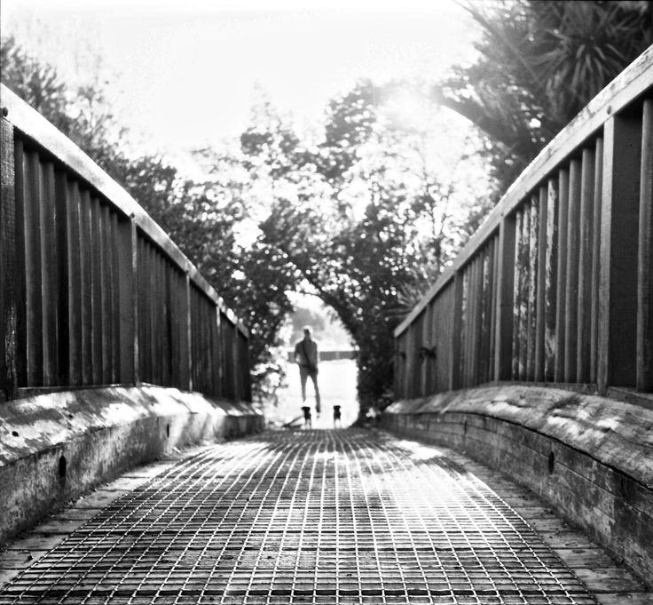 https://flic.kr/p/qFy4CK | The bridge | Taken with Yashica-D tlr, Shanghai GP3 100 film, hand processed and scanned using Canon 9000f