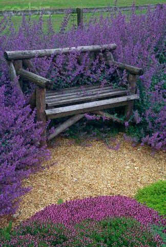 Lovely idea...perfect for reading a book and relaxing ...beautiful Lavender *sigh*