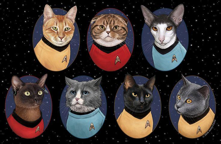 Et si les Super héros étaient des chats ?