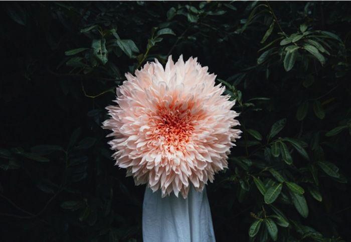 Гигантские цветы от Тиффани Тёрнер . Обсуждение на LiveInternet - Российский Сервис Онлайн-Дневников