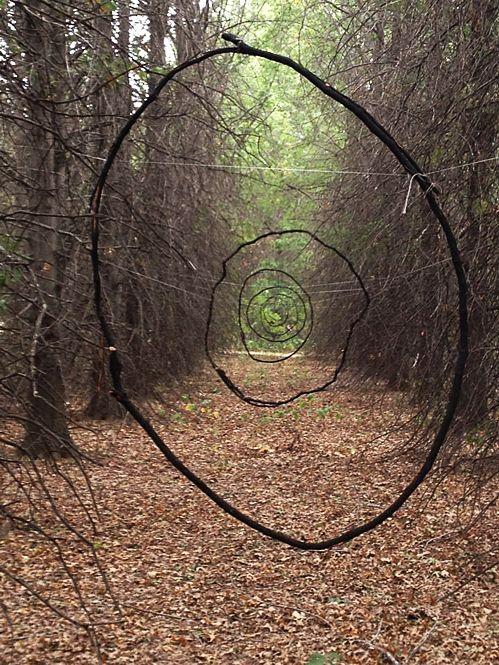 Árbol-Bosque-Camino. Walk in the woods                                                                                                                                                     Más