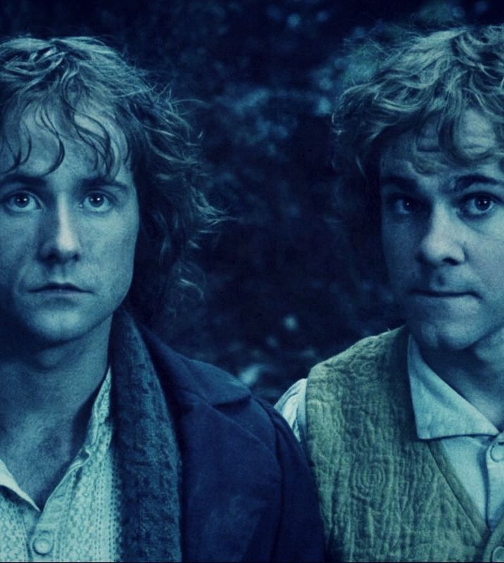 Merry and Pippin. (Dominic Monaghan and Billy Boyd) These two are funny, always hungry, but brave when they need to be.